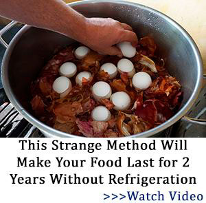 Fallout Decay - food preservation